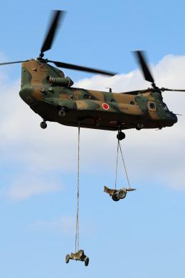 Wasawasa-isaoさんが、習志野演習場で撮影した陸上自衛隊 CH-47JAの航空フォト(飛行機 写真・画像)