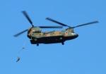 Wasawasa-isaoさんが、習志野演習場で撮影した陸上自衛隊 CH-47JAの航空フォト(写真)