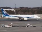 SK51Aさんが、成田国際空港で撮影した全日空 787-8 Dreamlinerの航空フォト(写真)