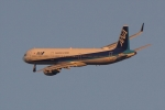 HEATHROWさんが、伊丹空港で撮影した全日空 A321-211の航空フォト(写真)