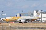subarist 1977さんが、成田国際空港で撮影したノックスクート 777-212/ERの航空フォト(写真)