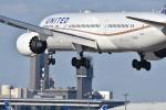 subarist 1977さんが、成田国際空港で撮影したユナイテッド航空 787-9の航空フォト(写真)