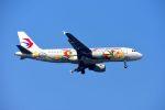 まいけるさんが、スワンナプーム国際空港で撮影した中国東方航空 A320-214の航空フォト(写真)
