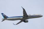 水月さんが、伊丹空港で撮影した全日空 A321-272Nの航空フォト(写真)