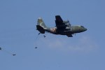 jackassさんが、習志野演習場で撮影した航空自衛隊 C-130H Herculesの航空フォト(写真)
