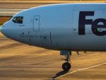 名無しの権兵衛さんが、成田国際空港で撮影したフェデックス・エクスプレス MD-11Fの航空フォト(写真)