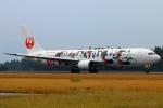 Kuuさんが、鹿児島空港で撮影した日本航空 767-346/ERの航空フォト(写真)