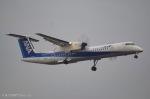 ⚓ほそっち⚓さんが、成田国際空港で撮影したANAウイングス DHC-8-402Q Dash 8の航空フォト(写真)