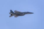 guttyさんが、千歳基地で撮影した航空自衛隊 F-15DJ Eagleの航空フォト(写真)