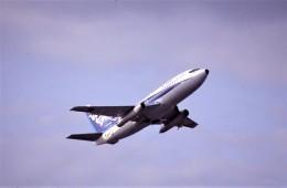 kumagorouさんが、仙台空港で撮影した全日空 737-281/Advの航空フォト(飛行機 写真・画像)