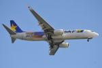 350JMさんが、羽田空港で撮影したスカイマーク 737-81Dの航空フォト(写真)