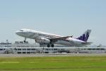 ⚓ほそっち⚓さんが、鹿児島空港で撮影した香港エクスプレス A320-232の航空フォト(写真)