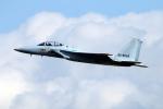 なごやんさんが、名古屋飛行場で撮影した航空自衛隊 F-15DJ Eagleの航空フォト(写真)