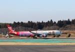 ハム太郎。さんが、成田国際空港で撮影したタイ・エアアジア・エックス A330-343Xの航空フォト(写真)