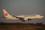 JA8037さんが、成田国際空港で撮影した日本航空 737-846の航空フォト(写真)