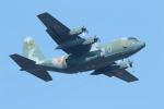ゆずポン酢さんが、習志野演習場で撮影した航空自衛隊 C-130H Herculesの航空フォト(写真)