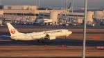 mich_stoneさんが、羽田空港で撮影した日本航空 737-846の航空フォト(写真)