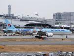 White Pelicanさんが、関西国際空港で撮影した大韓航空 777-3B5/ERの航空フォト(写真)