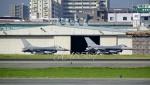 JA8589さんが、福岡空港で撮影したアメリカ空軍 F-16CM-40-CF Fighting Falconの航空フォト(写真)