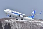 falconさんが、秋田空港で撮影した全日空 737-881の航空フォト(写真)