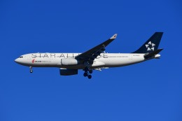 kamerajiijiさんが、成田国際空港で撮影した中国国際航空 A330-243の航空フォト(写真)