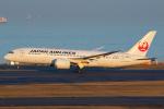よっしぃさんが、羽田空港で撮影した日本航空 787-8 Dreamlinerの航空フォト(写真)