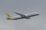 神宮寺ももさんが、香港国際空港で撮影したロイヤルブルネイ航空 787-8 Dreamlinerの航空フォト(写真)