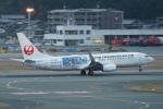 pringlesさんが、福岡空港で撮影した日本トランスオーシャン航空 737-8Q3の航空フォト(写真)