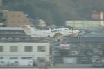 pringlesさんが、福岡空港で撮影したアメリカ陸軍 C-12U-3 Huron (B200C)の航空フォト(写真)
