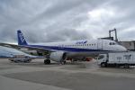 TulipTristar 777さんが、広島空港で撮影した全日空 A320-211の航空フォト(写真)
