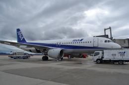 TulipTristar 777さんが、広島空港で撮影した全日空 A320-211の航空フォト(飛行機 写真・画像)