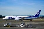 TulipTristar 777さんが、シアトル タコマ国際空港で撮影した全日空 787-8 Dreamlinerの航空フォト(写真)