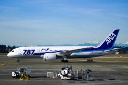 TulipTristar 777さんが、シアトル タコマ国際空港で撮影した全日空 787-8 Dreamlinerの航空フォト(飛行機 写真・画像)