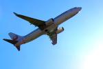 ひめままさんが、宮崎空港で撮影した日本航空 737-846の航空フォト(写真)