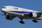 キイロイトリさんが、伊丹空港で撮影した全日空 777-281の航空フォト(写真)