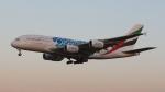 raichanさんが、成田国際空港で撮影したエミレーツ航空 A380-861の航空フォト(写真)