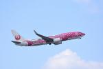 ひこ☆さんが、那覇空港で撮影した日本トランスオーシャン航空 737-8Q3の航空フォト(写真)