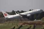 れえどんさんが、成田国際空港で撮影した中国国際航空 737-89Lの航空フォト(写真)