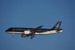 JA8037さんが、羽田空港で撮影したスターフライヤー A320-214の航空フォト(写真)