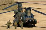 banshee02さんが、習志野演習場で撮影した陸上自衛隊 CH-47JAの航空フォト(写真)