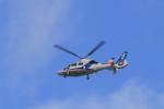 non-nonさんが、伊丹空港で撮影したオールニッポンヘリコプター AS365N3 Dauphin 2の航空フォト(写真)