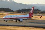 せせらぎさんが、静岡空港で撮影した中国聯合航空 737-89Pの航空フォト(写真)
