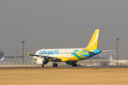 Tango Alphaさんが、成田国際空港で撮影したセブパシフィック航空 A320-214の航空フォト(飛行機 写真・画像)