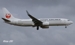 RINA-281さんが、小松空港で撮影した日本航空 737-846の航空フォト(写真)