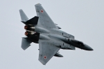 kaeru6006さんが、静浜飛行場で撮影した航空自衛隊 F-15J Eagleの航空フォト(写真)