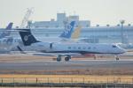 ちゃぽんさんが、成田国際空港で撮影したWJV658 Llc G-Vの航空フォト(写真)