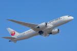 ちゃぽんさんが、成田国際空港で撮影した日本航空 787-8 Dreamlinerの航空フォト(飛行機 写真・画像)