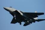 485k60さんが、岐阜基地で撮影した航空自衛隊 F-15J Kai Eagleの航空フォト(写真)