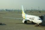 485k60さんが、羽田空港で撮影したAIR DO 737-781の航空フォト(写真)