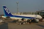 485k60さんが、羽田で撮影した全日空 A320-211の航空フォト(写真)